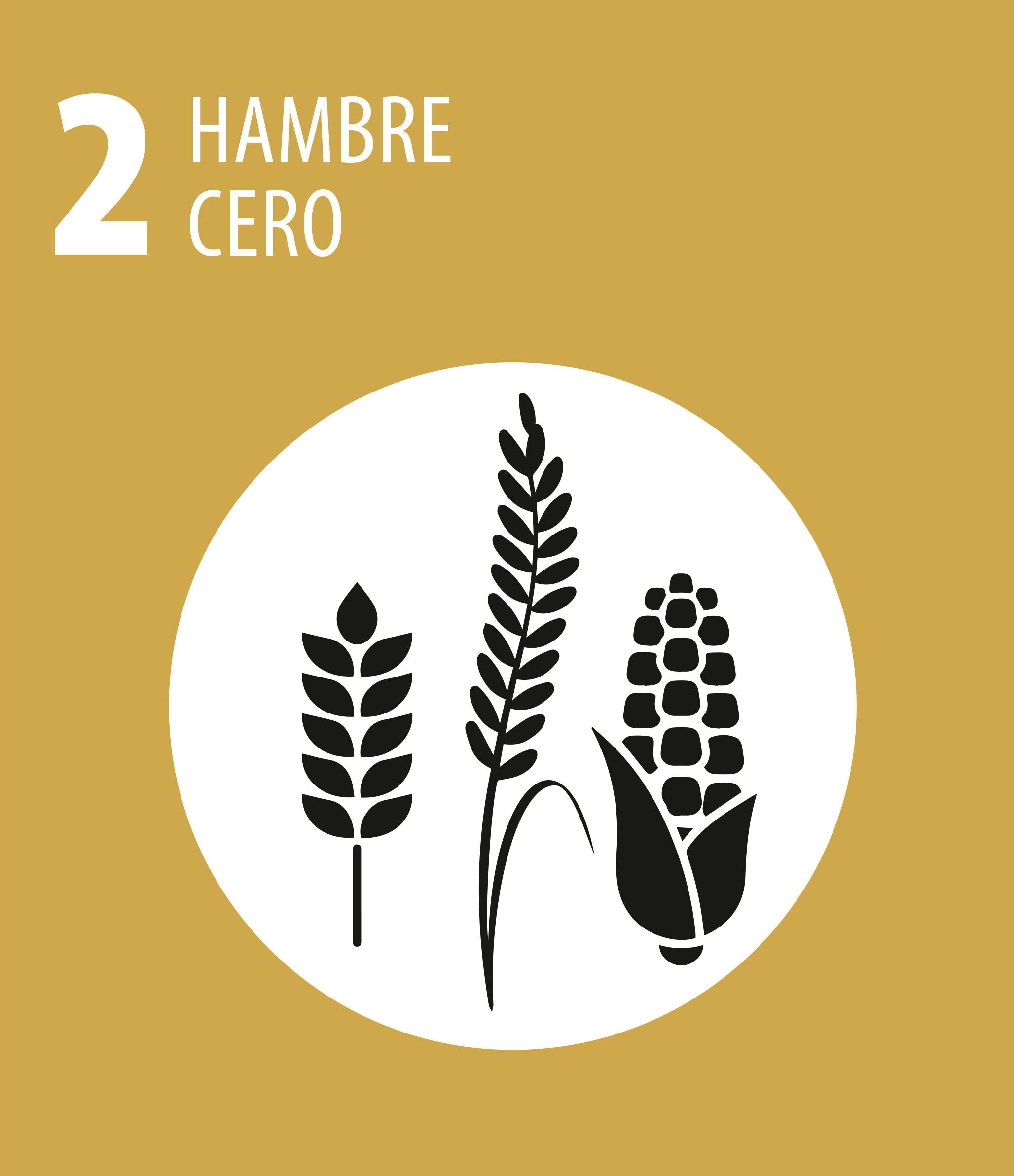ODS 2 Hambre cero