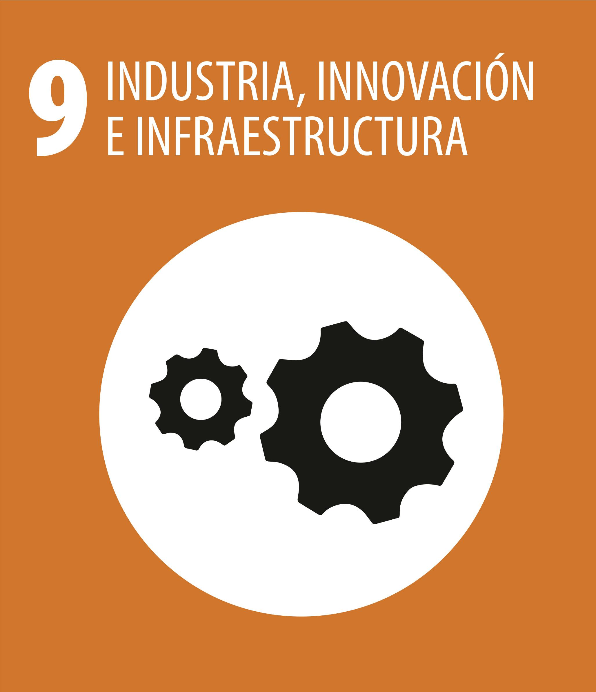ODS 9 Industria innovacion infraestructura