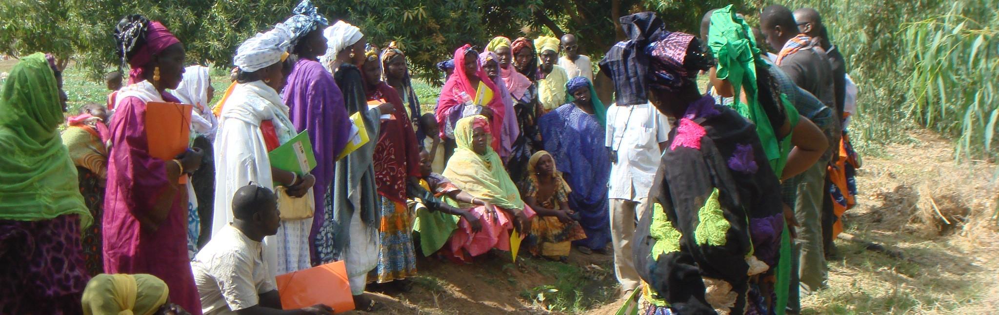 mauritania_formacion cooperativa mujeres_1