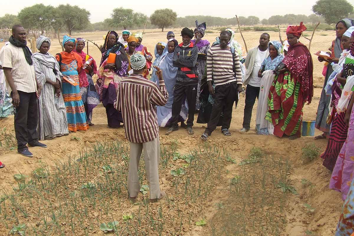 mauritania_formacion cooperativa mujeres_3
