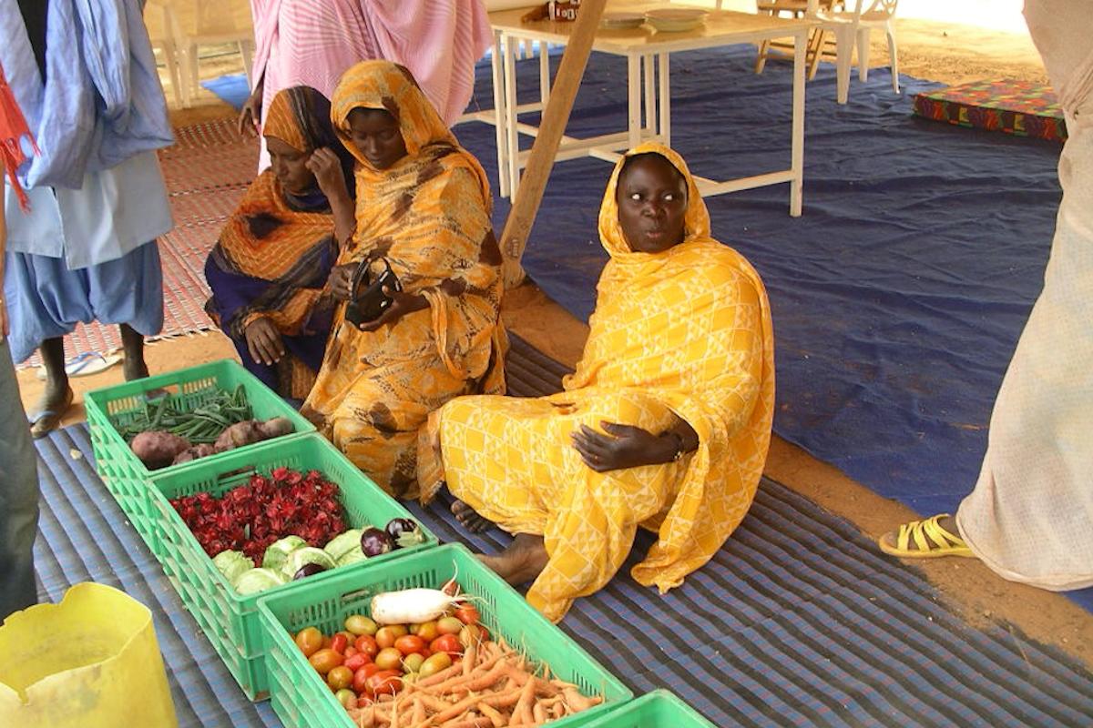 Mejora de la calidad de la producción agrícola EHR 2008